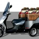 Vendita/trasporto fiori
